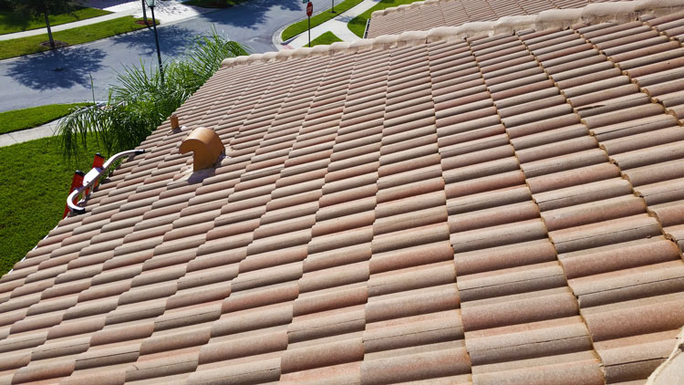 After Nearly Ten Years In The Roof Cleaning Industry We Are Familiar With  The Cyclical Process Of Algae Removal And Regrowth. We Prefer To Be  Proactive ...